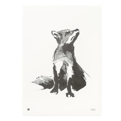 Teemu J�rvi Illustrations Fox poster, 50 x 70 cm