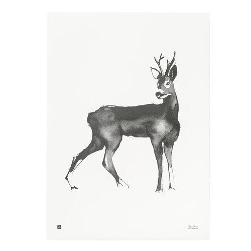 Teemu J�rvi Illustrations Deer poster, 50 x 70 cm