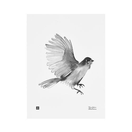 Teemu J�rvi Illustrations Siberian Jay poster, 30 x 40 cm