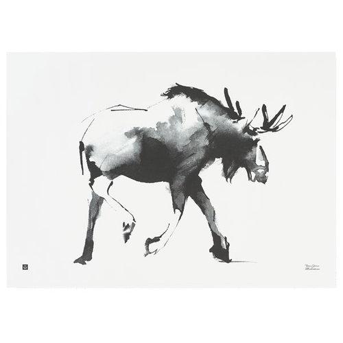 Teemu J�rvi Illustrations Elk poster, 70 x 50 cm