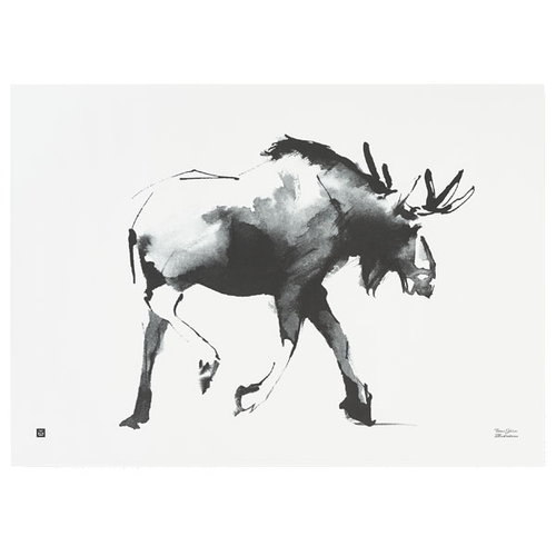 Teemu Järvi Illustrations Elk poster, 70 x 50 cm