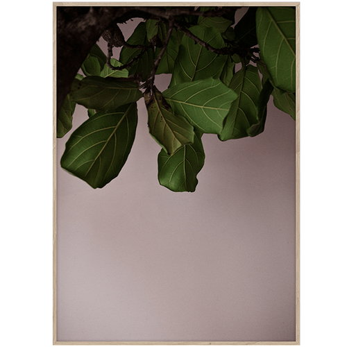 Paper Collective Green Leaves poster