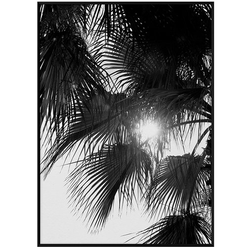 Paper Collective Palm Trees poster