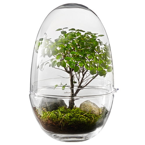 Design House Stockholm Grow minikasvihuone, XL