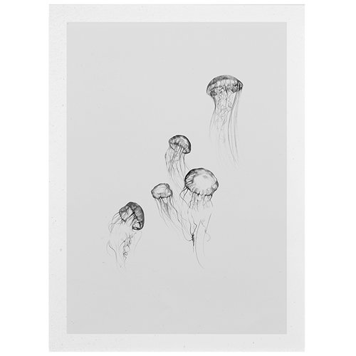 Paper Collective Jellyfish poster