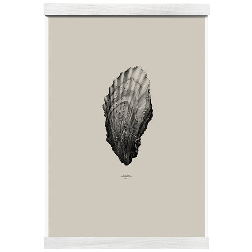 Paper Collective Nature 1:1 Oyster juliste, beige