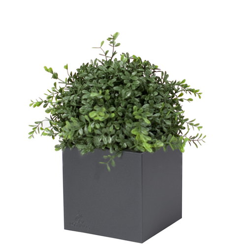 Röshults Linné pot 40, anthracite