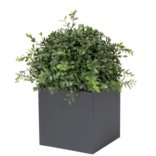 R�shults Linn� pot 50, anthracite