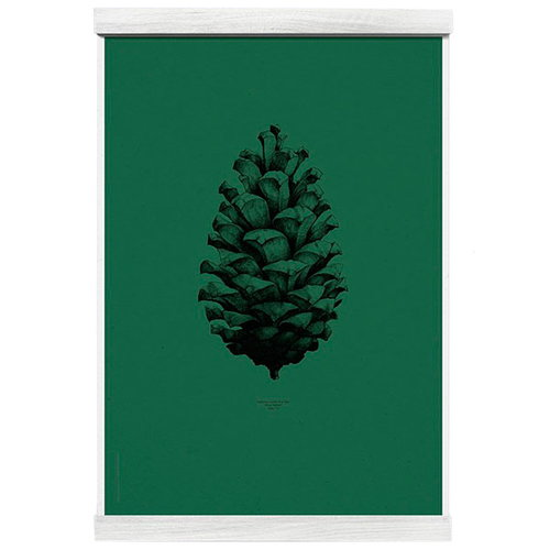 Paper Collective Nature 1:1 Pine Cone poster, dark forest green