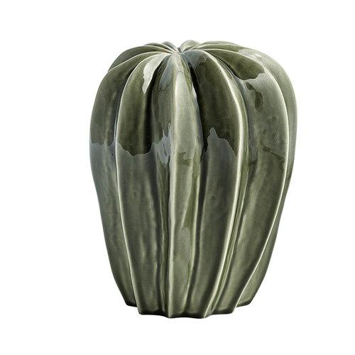 Hay Cacti, uno