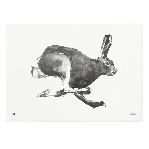 Teemu Järvi Illustrations Jänis juliste, 70 x 50 cm