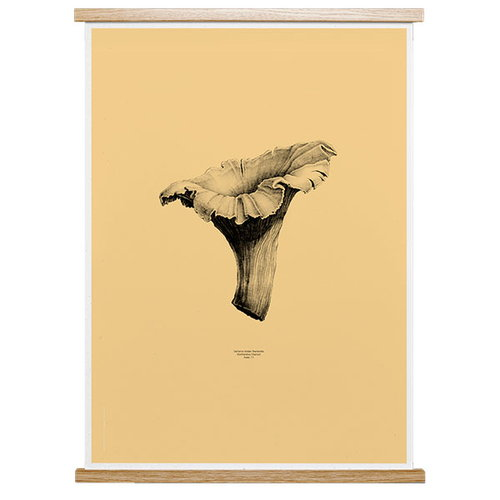 Paper Collective Nature 1:1 Chanterelle poster, pale yellow