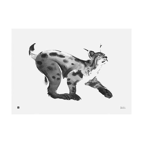 Teemu J�rvi Illustrations Lynx poster, 70 x 50 cm