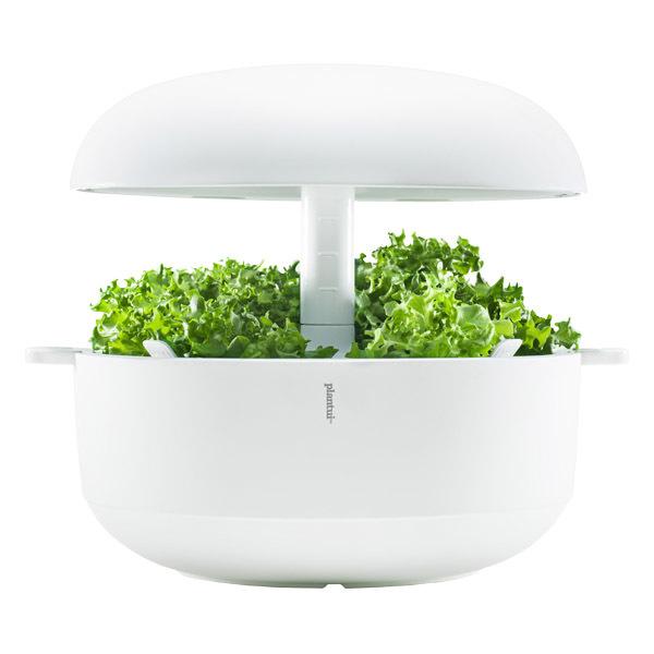 Plantui Smart Garden 6, white