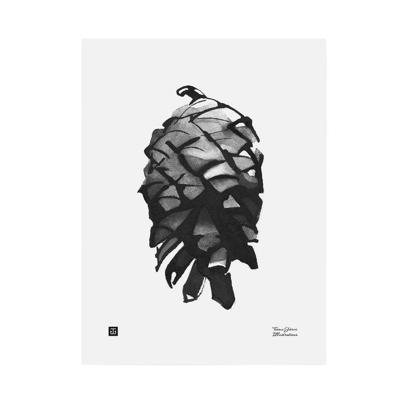 Teemu Järvi Illustrations Pine cone poster, 30 x 40 cm