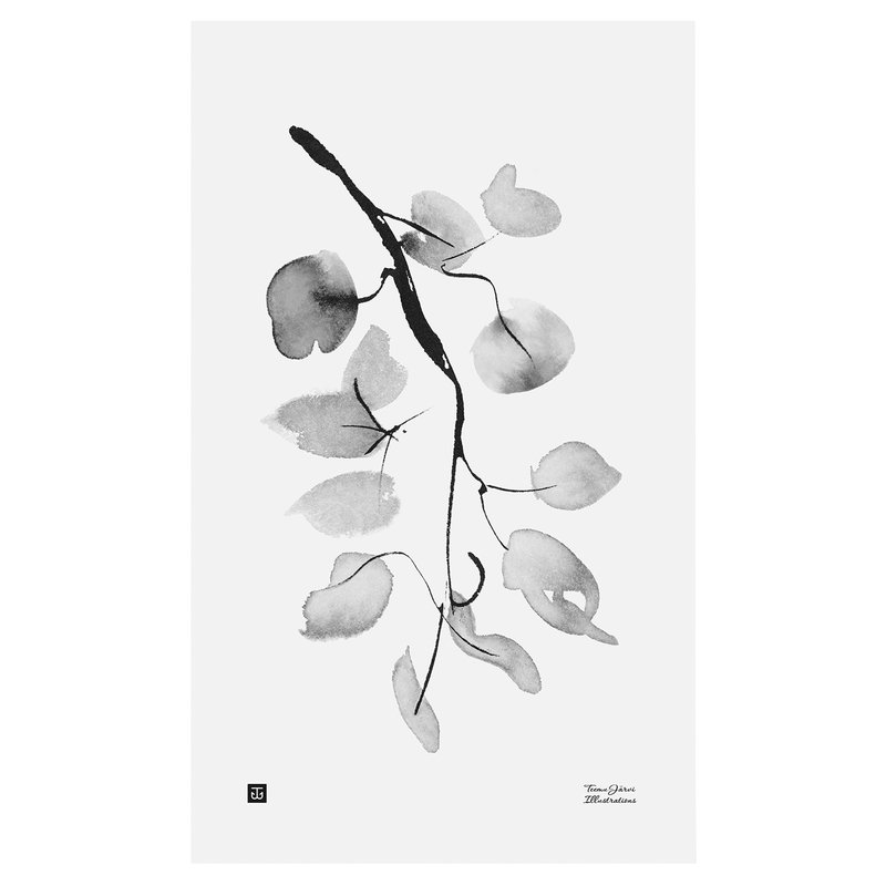 Teemu Järvi Illustrations Birch branch poster, 30 x 50 cm