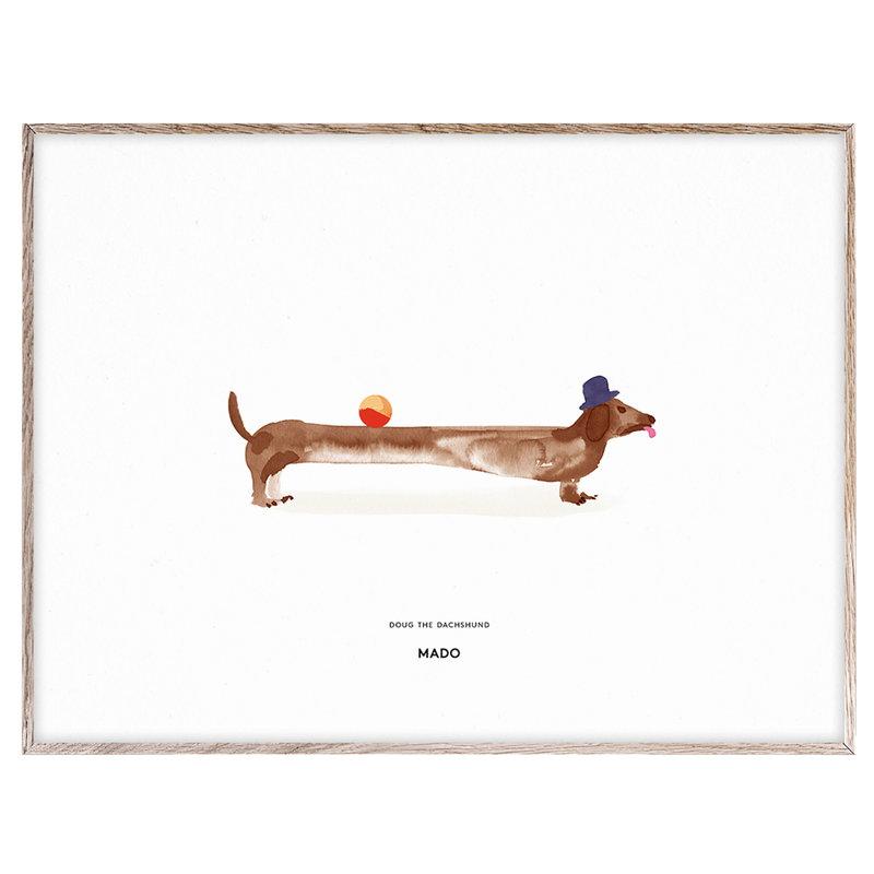 MADO Doug the Dachshund poster, 40 x 30 cm