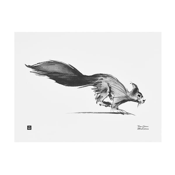 Teemu Järvi Illustrations Poster Scoiattolo, 40 x 30 cm