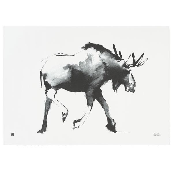 Teemu Järvi Illustrations Poster Alce, 70 x 50 cm
