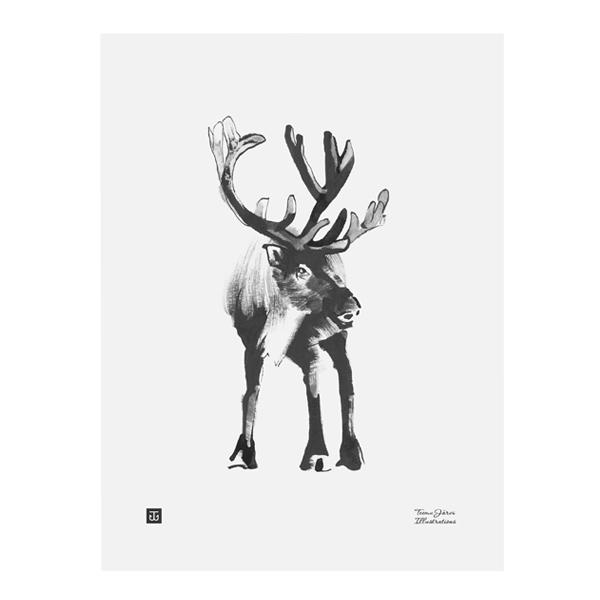 Teemu Järvi Illustrations Reindeer poster, 30 x 40 cm