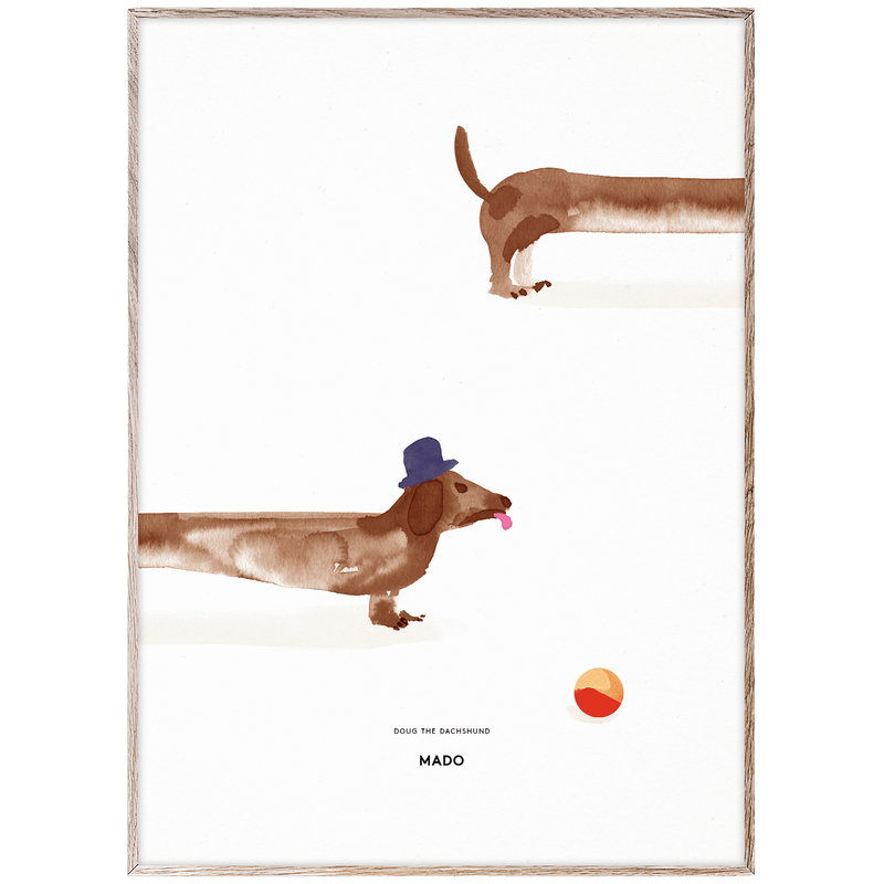 MADO Doug the Dachshund poster, 50 x 70 cm