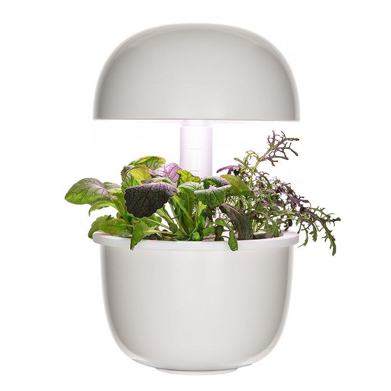 Plantui Smart Garden 3e, bianco