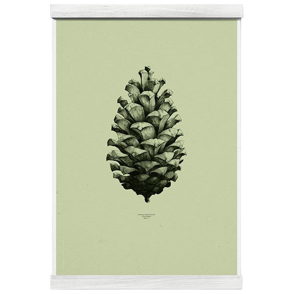 Paper Collective Nature 1:1 Pine Cone juliste, light forest green