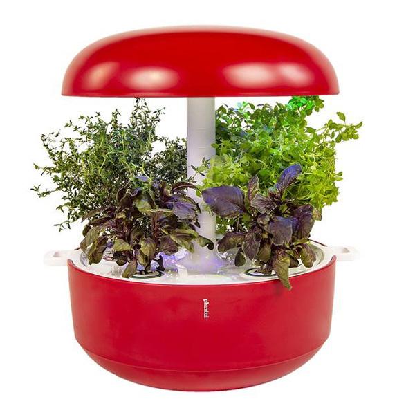 Plantui Smart Garden 6, punainen