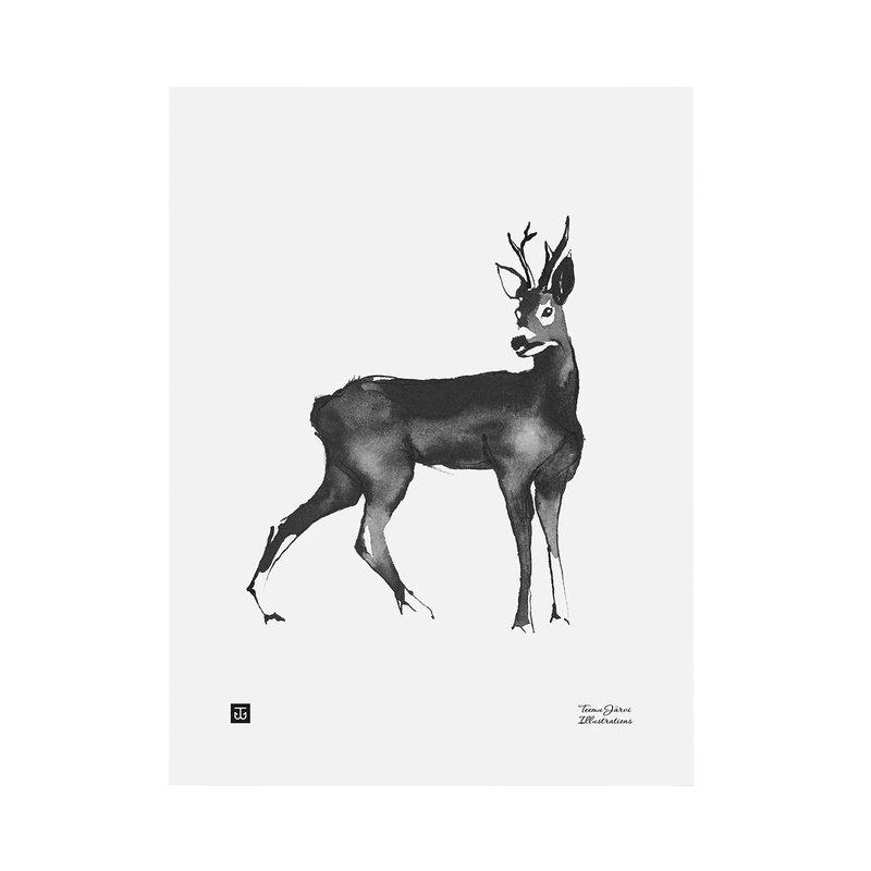 Teemu Järvi Illustrations Kauris juliste 30 x 40 cm