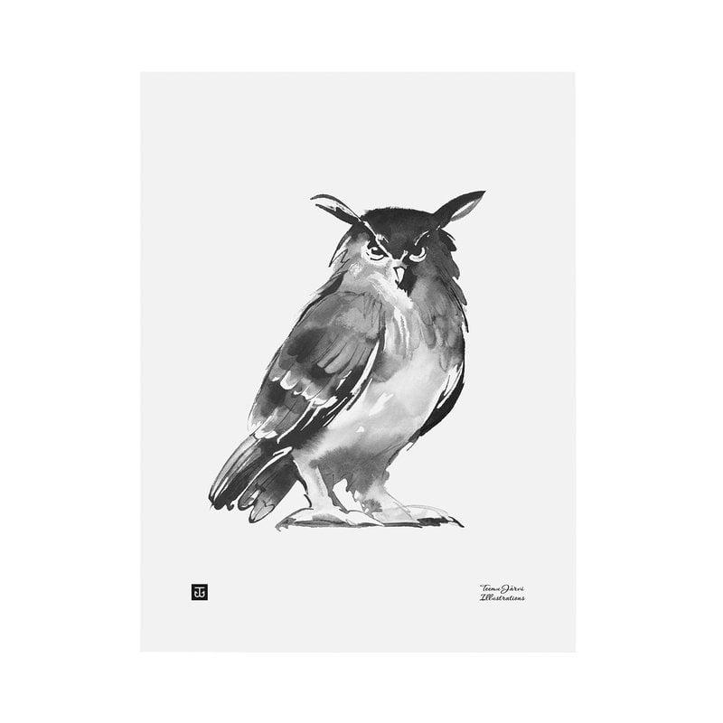 Teemu Järvi Illustrations Pöllö juliste, 30 x 40 cm