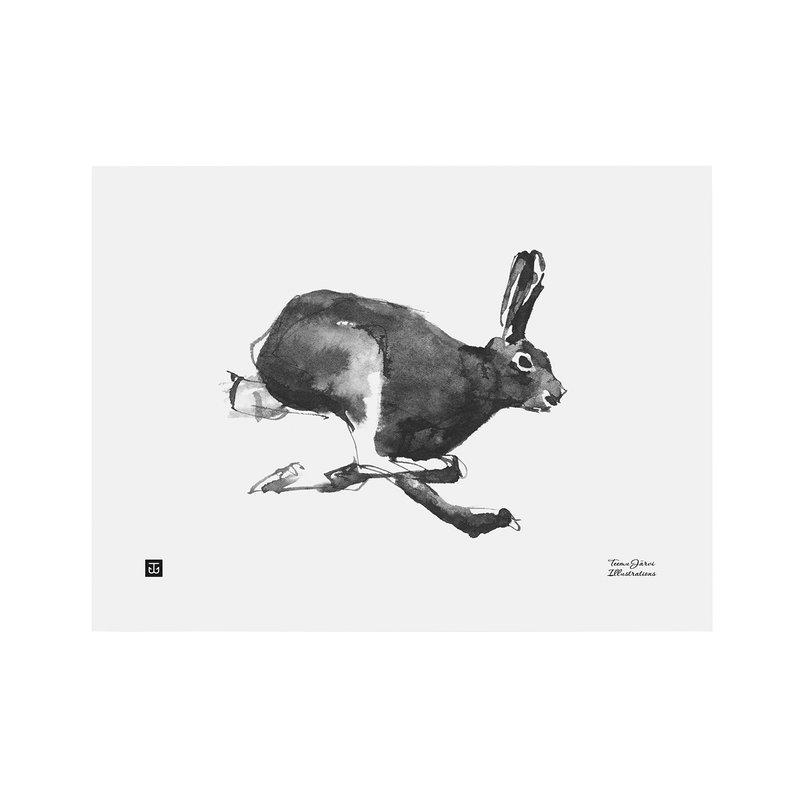 Teemu Järvi Illustrations Jänis juliste 40 x 30 cm