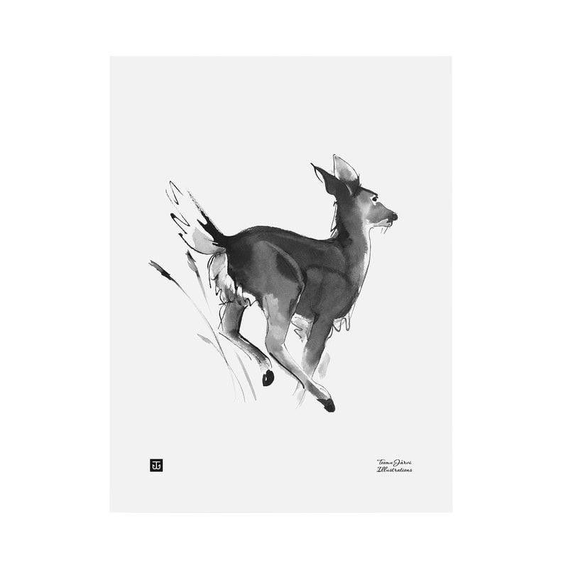 Teemu Järvi Illustrations Poster Cervo dalla coda bianca, 30 x 40 cm