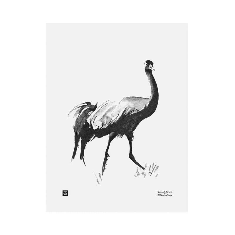 Teemu Järvi Illustrations Kurki juliste, 30 x 40 cm