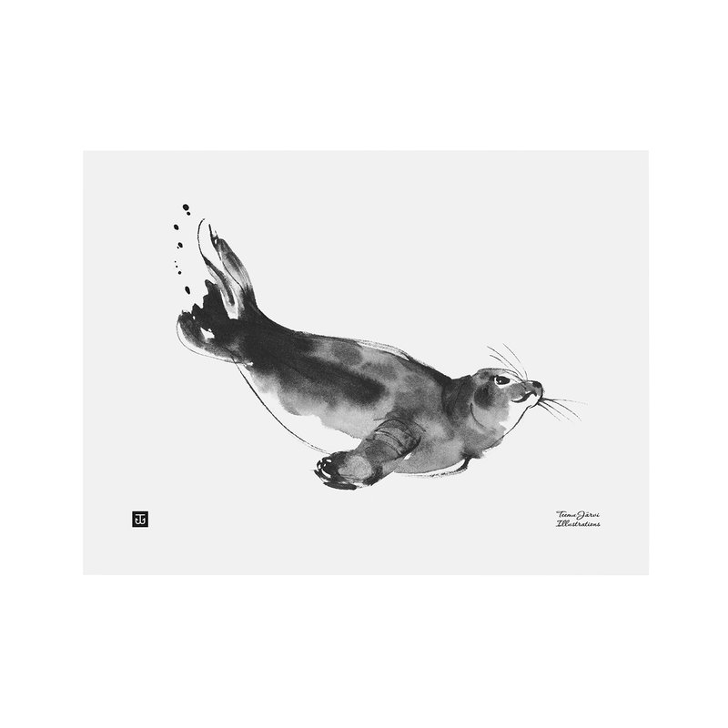 Teemu Järvi Illustrations Poster Foca dagli Anelli, 30 x 40 cm