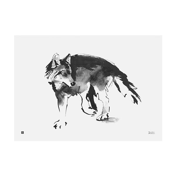 Teemu Järvi Illustrations Susi juliste, 70 x 50 cm